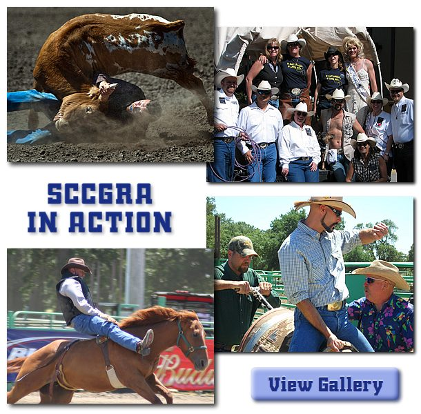 collage of images from the sccgra 2012 rodeo school