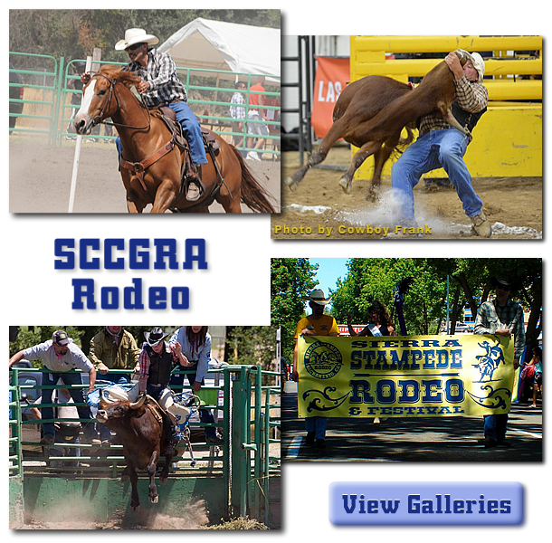 collage of images from the sccgra rodeo